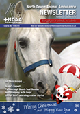 NDAA Newsletter Autumn 2013